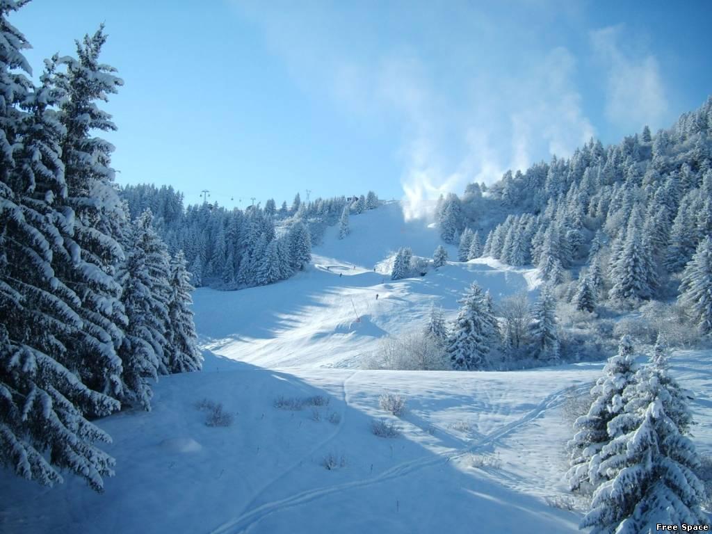 Профессиональные фото зимы 3